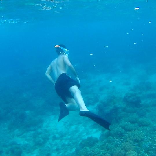 Snorkel en las Gili